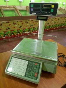 Vegetable Shop Equipment for Sale